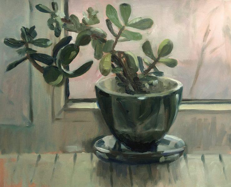 still-life-oil-painting-money-plant-crassula-ovata